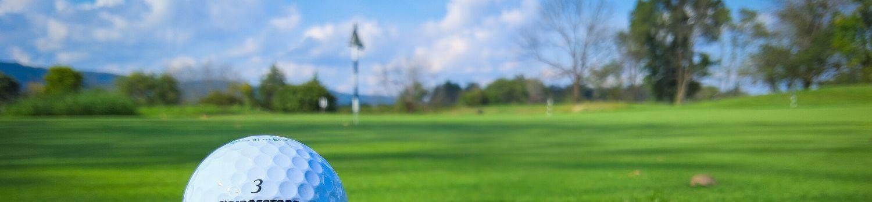 hazelle en haye golf